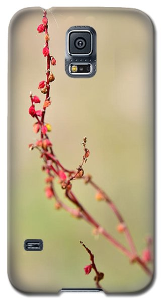 Tenderness In Japanese Style Galaxy S5 Case