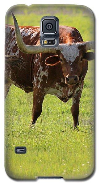 Texas Pride Galaxy S5 Case