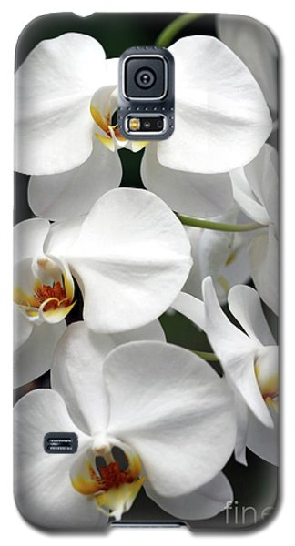The Beauty Of Orchids  Galaxy S5 Case