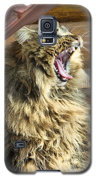 The Cat Who Loves To Sing Galaxy S5 Case