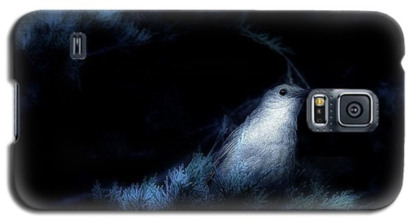 The Catbird Galaxy S5 Case