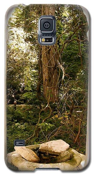 The Doorway Galaxy S5 Case by Robin Regan
