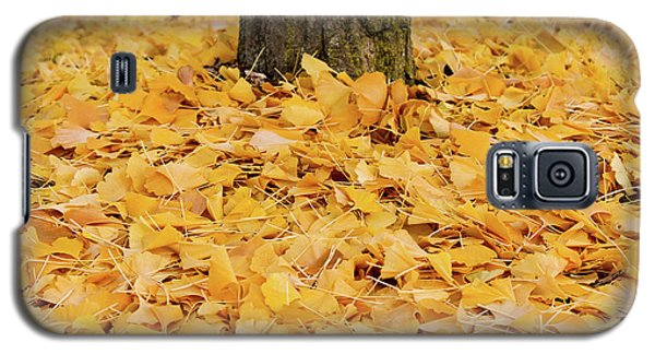 Galaxy S5 Case featuring the photograph The Fall Of Ginkgo by Rachel Cohen