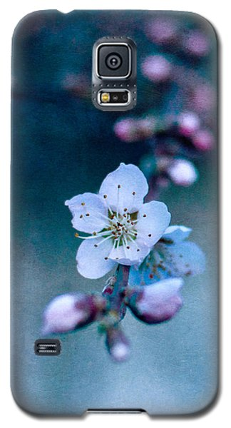 The First Galaxy S5 Case by Laura Melis