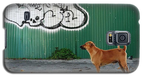 Galaxy S5 Case featuring the photograph The Graffiti Artist by Nola Lee Kelsey
