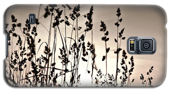 The Grass At Sunset Galaxy S5 Case