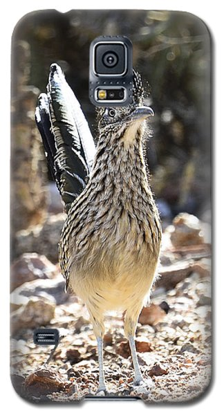 The Greater Roadrunner  Galaxy S5 Case