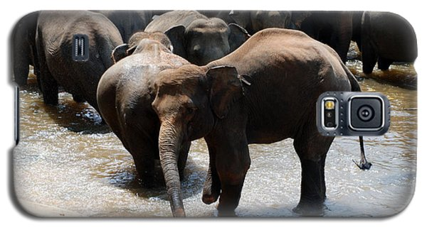 Galaxy S5 Case featuring the photograph The Hurt Elephant by Pravine Chester