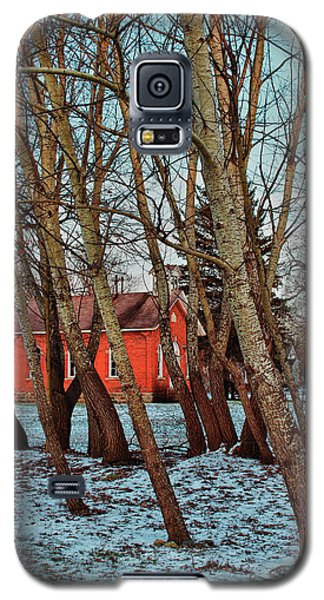 Galaxy S5 Case featuring the photograph The Leaning by Rachel Cohen