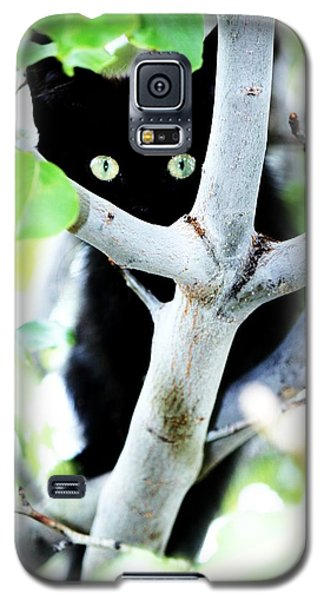 Galaxy S5 Case featuring the photograph The Little Huntress by Jessica Shelton