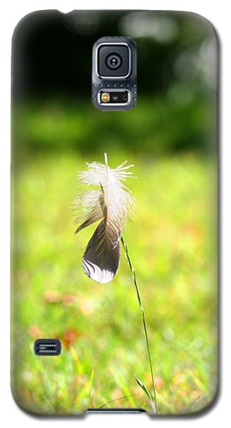 The Lost Feather Galaxy S5 Case by JM Photography