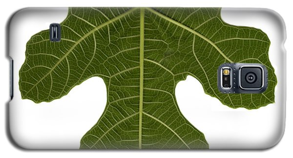 The Mission Fig Leaf Galaxy S5 Case