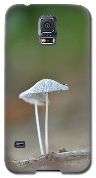 The Mushrooms Galaxy S5 Case