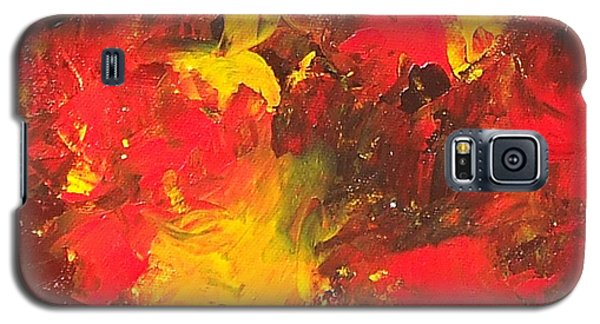 The Old Masters Galaxy S5 Case