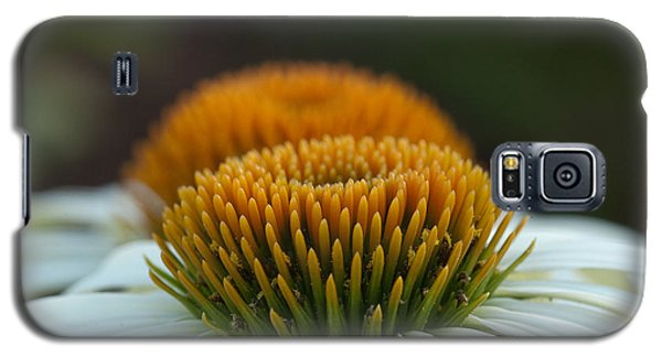 Galaxy S5 Case featuring the photograph The Pair Of Coneflowers by Monte Stevens