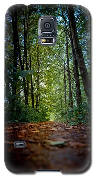 The Pathway In The Forest Galaxy S5 Case