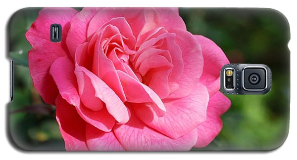 Galaxy S5 Case featuring the photograph The Pink Rose by Fotosas Photography