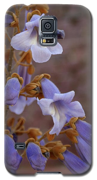 Galaxy S5 Case featuring the photograph The Princess Flower by Paul Mashburn