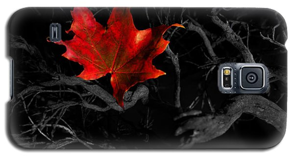 The Red Leaf Galaxy S5 Case