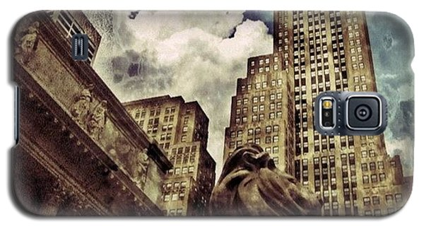 Sky Galaxy S5 Case - The Resting Lion - Nyc by Joel Lopez