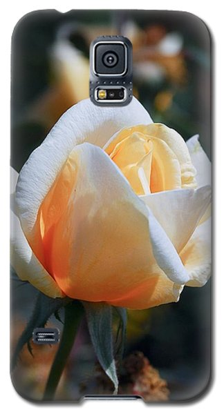 Galaxy S5 Case featuring the photograph The Rose by Fotosas Photography