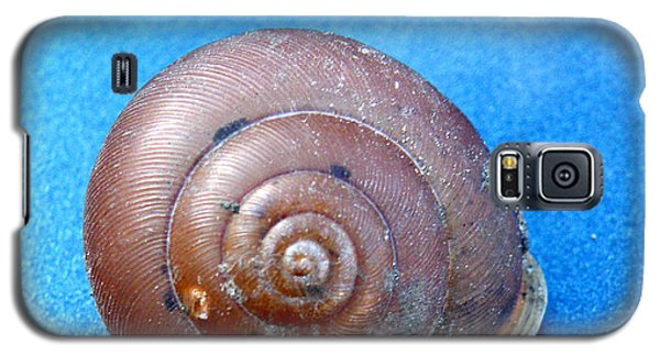 The Shell Of A Snail Galaxy S5 Case