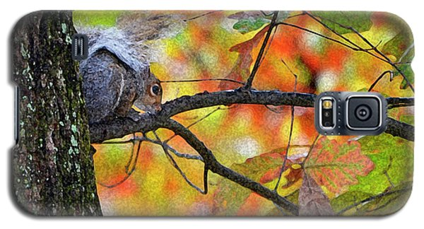 Galaxy S5 Case featuring the photograph The Squirrel Umbrella by Paul Mashburn