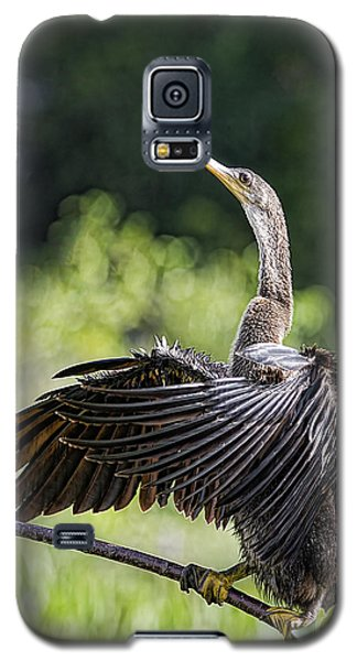 Galaxy S5 Case featuring the photograph The Sun Worshiper by Anne Rodkin