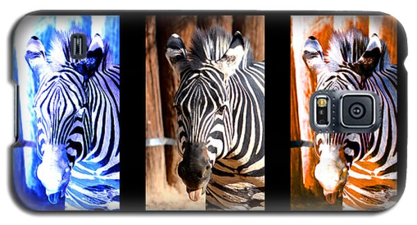 Galaxy S5 Case featuring the photograph The Three Zebras Black Borders by Rebecca Margraf