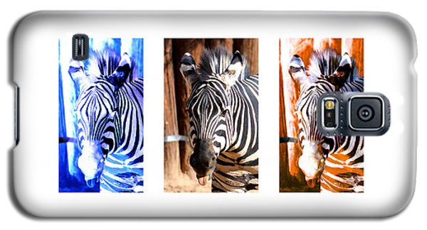 Galaxy S5 Case featuring the photograph The Three Zebras White Borders by Rebecca Margraf