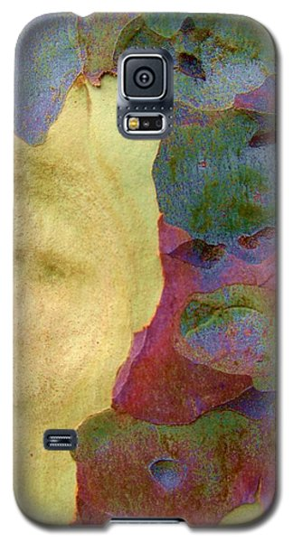The True Colors Of A Tree Galaxy S5 Case