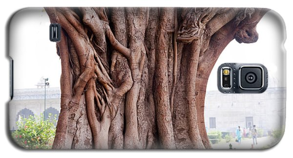 Galaxy S5 Case featuring the photograph The Twisted And Gnarled Stump And Stem Of A Large Tree Inside The Qutub Minar Compound by Ashish Agarwal