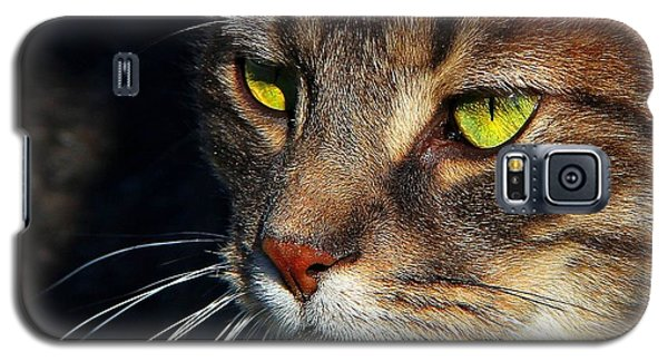 Galaxy S5 Case featuring the photograph The Watcher by Davandra Cribbie