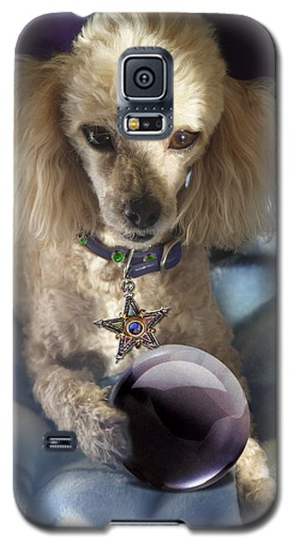 The Wizard Of Dogs Galaxy S5 Case