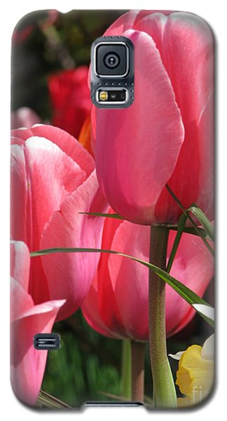 Galaxy S5 Case featuring the photograph There Is Pink In Heaven by Rory Sagner