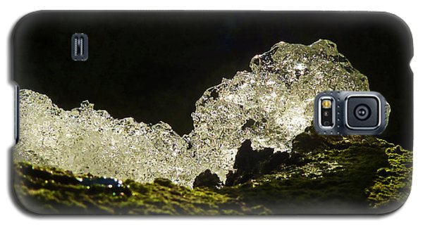 Galaxy S5 Case featuring the photograph This Is A Very Hungry Cold Caterpillar  by Steve Taylor