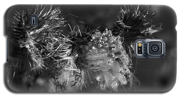 Thistle Seeds Galaxy S5 Case