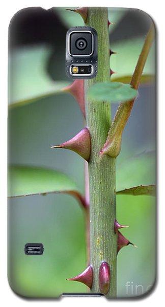 Thorny Stem Galaxy S5 Case