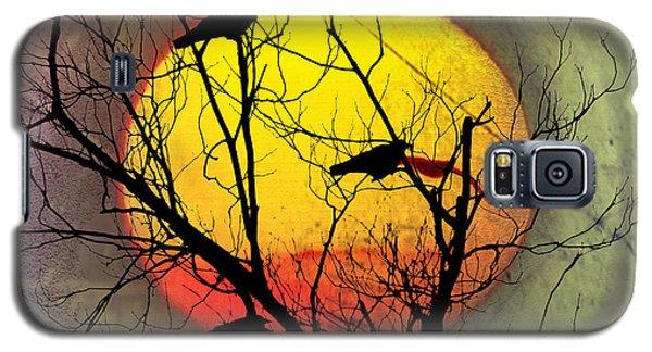 Three Blackbirds Galaxy S5 Case by Bill Cannon
