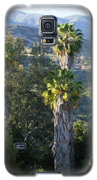 Galaxy S5 Case featuring the photograph Three Palm Trees by Sue Halstenberg