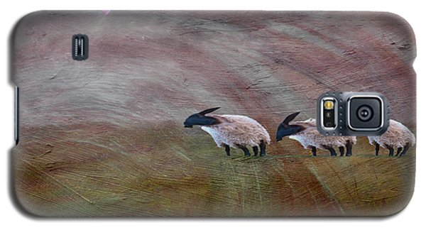 Three Sheep In The Wind And Pigs Fly Galaxy S5 Case