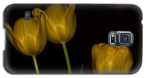 Galaxy S5 Case featuring the photograph Three Tulips by Ed Gleichman