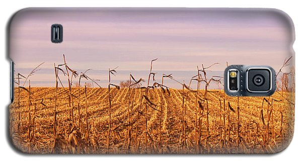 Galaxy S5 Case featuring the photograph Through The Cornfield by Rachel Cohen