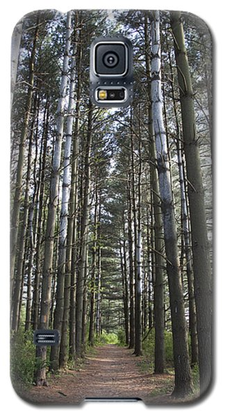 Through The Woods Galaxy S5 Case by Jeannette Hunt