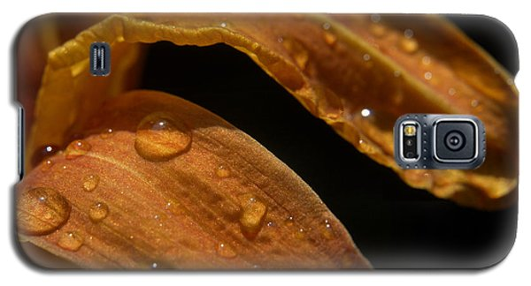 Tiger Lilly Leaf With Raindrops Galaxy S5 Case