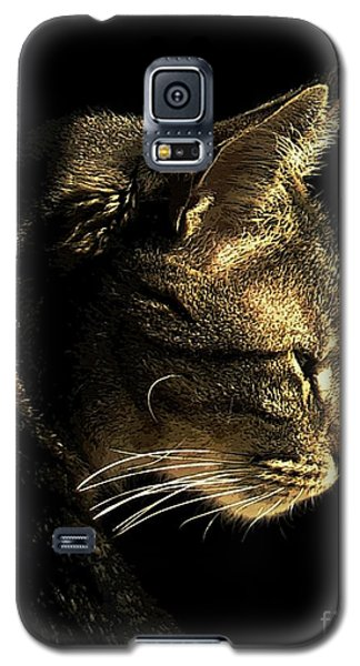 Tiger Within Galaxy S5 Case