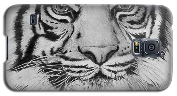 Tiger's Eyes Galaxy S5 Case