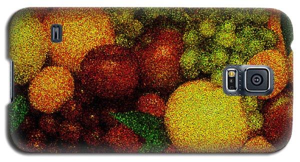Tiled Fruit  Galaxy S5 Case