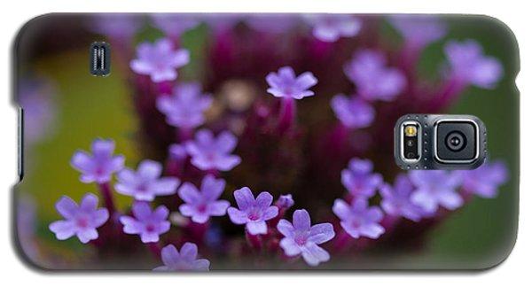 tiny blossoms II Galaxy S5 Case