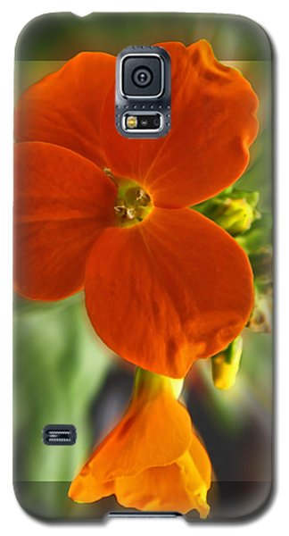 Galaxy S5 Case featuring the photograph Tiny Orange Flower by Debbie Portwood